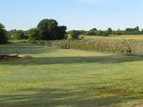 Income Producing 5 Acre Pays Price : Schulter : Okmulgee County : Oklahoma