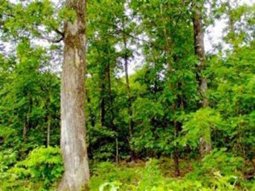 Land For Sale In Alton Missouri : Alton : Oregon County : Missouri