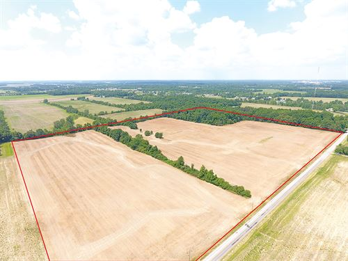 47.6 Acres Vacant Land : Cridersville : Auglaize County : Ohio