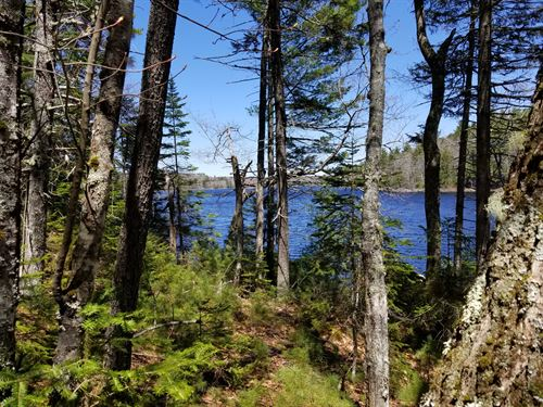 Staples Wight Pond : Penobscot : Hancock County : Maine