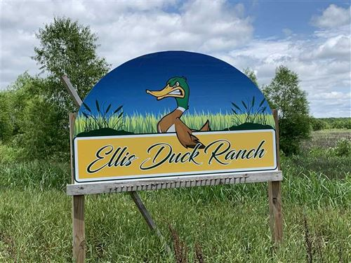 Ellis Duck Club 167 Acres Livingst : Chillicothe : Livingston County : Missouri