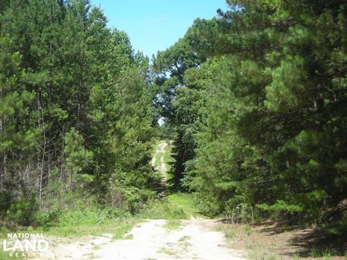 205 Acre Timber Investment/Hunting : Tallapoosa : Haralson County : Georgia