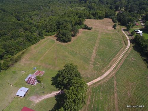40 Ac, Home And Open Pasture : Lillie : Union Parish : Louisiana