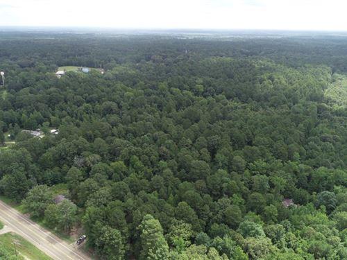 Recreational Timberland, Utilities : Mount Holly : Union County : Arkansas