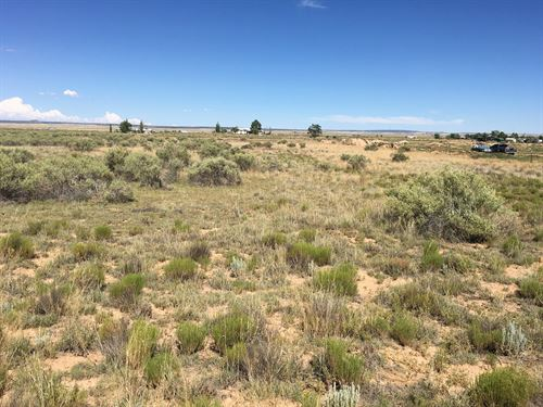 Land Moriarty NM Torrance County : Moriarty : Torrance County : New Mexico
