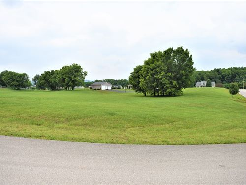 Large Lot, 39, Wellington : Cave City : Barren County : Kentucky