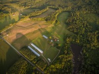 Impressive Farm In Great Location : Graham : Alamance County : North Carolina