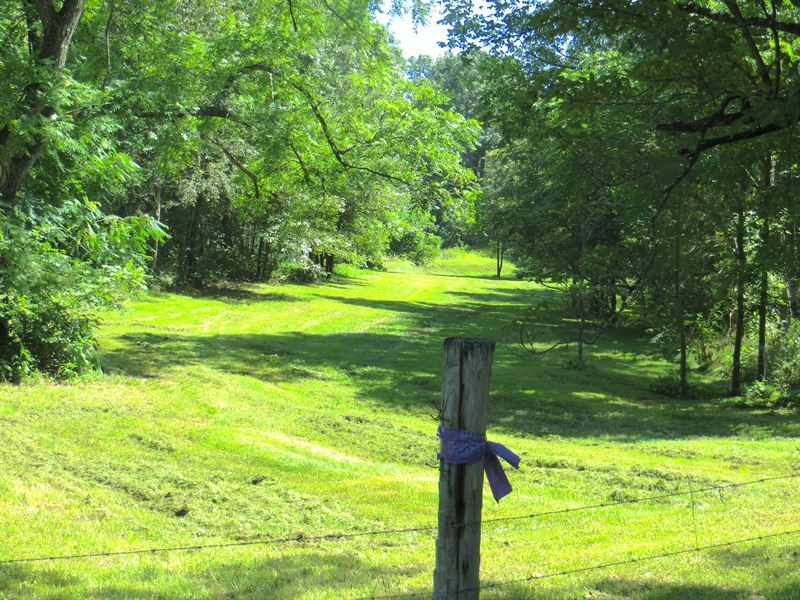 Land For Sale With Cabin In Mo : Thayer : Oregon County : Missouri