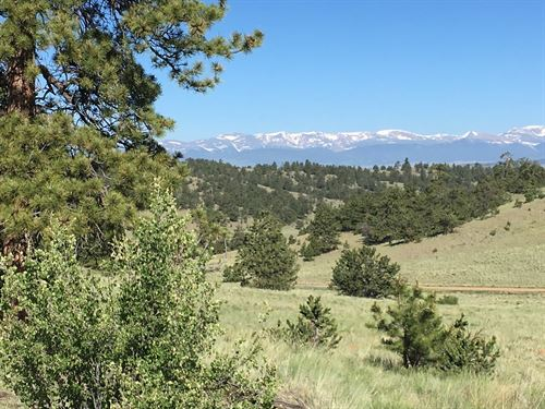 Stunning 5 Acres, Amazing Views : Hartsel : Park County : Colorado