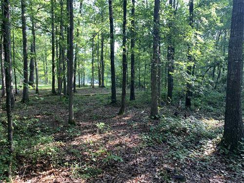 11 Timber Acres, Power, Water : McRae : White County : Arkansas