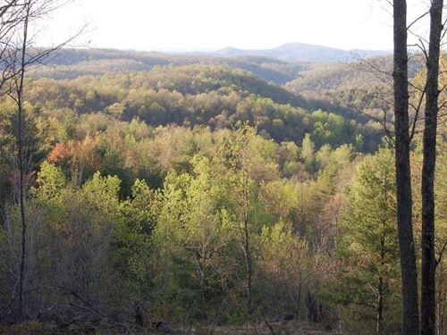 Recreational Property Shawsville : Shawsville : Montgomery County : Virginia