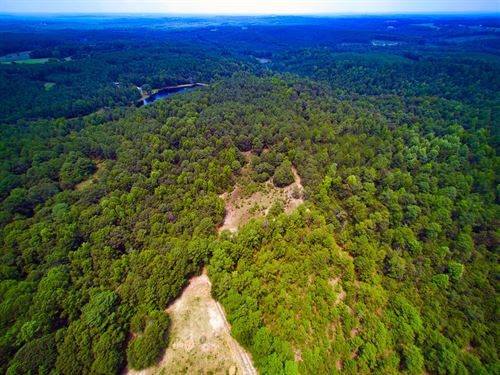 Acreage For Sale Near Wadesboro NC : Wadesboro : Anson County : North Carolina