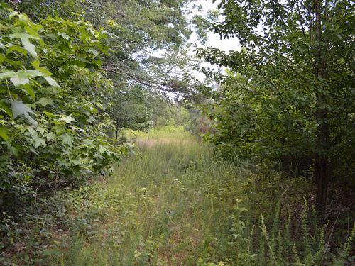 39.66 Acres Near Cooley Springs : Inman : Spartanburg County : South Carolina