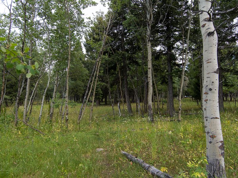 Grassy Mtn Retreat Parcel 1 : Townsend : Meagher County : Montana