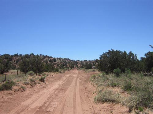 Trees & Stunning Views In Az : Snowflake : Navajo County : Arizona