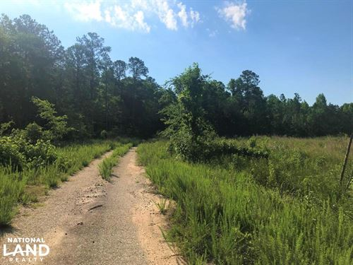 Edgefield Hunting Land : Edgefield : South Carolina