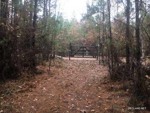12 Ac, Wooded Recreational Tract : Chatham : Jackson Parish : Louisiana