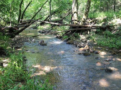 26.5 Acres Just Outside Calico : Pineville : Izard County : Arkansas