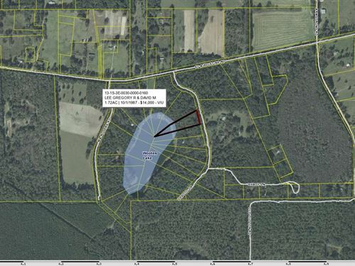 Two Lakefront Lots North Florida : Monticello : Jefferson County : Florida