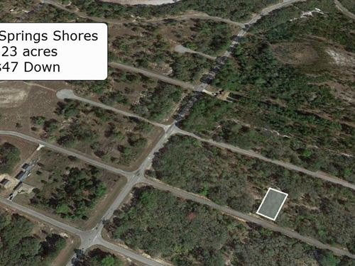 .23 Acre Lot On Paved Road Ocklawah : Ocklawaha : Marion County : Florida