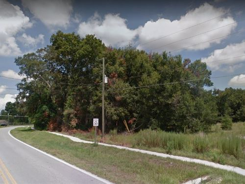 Beautiful .26 Acre Lot On Pave Road : Ocala : Marion County : Florida