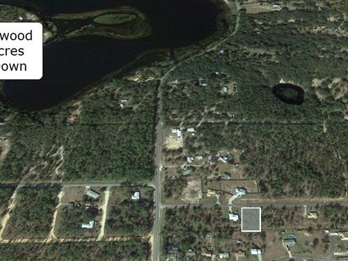 .56 Acre Property On Paved Road : Interlachen : Marion County : Florida