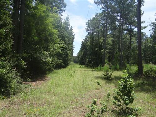 Vander Almond Rd Tract, Webster PA : Minden : Webster Parish : Louisiana