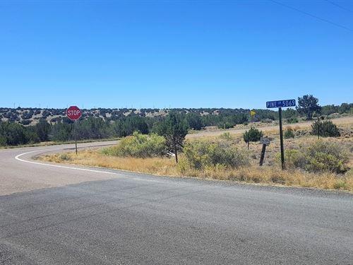Beautiful Treed Corner Lot-$125 P/M : Concho : Apache County : Arizona