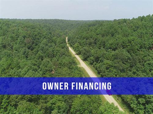 $500 Down On Hunting : Birch Tree : Shannon County : Missouri