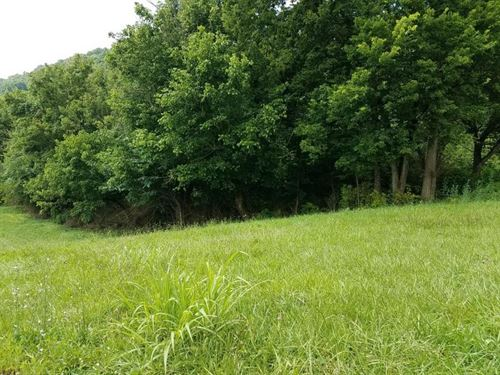 Vacant Land With Potential : Sneedville : Hancock County : Tennessee