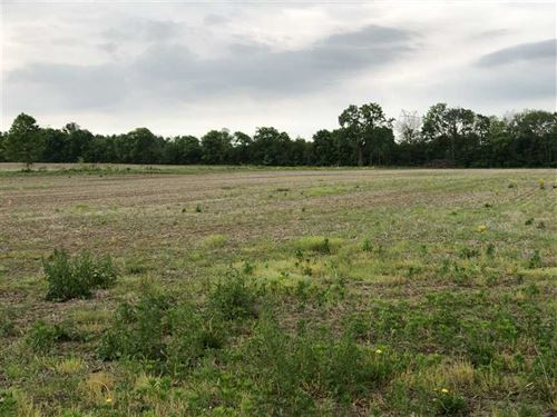 Lot 2, 10 Acres, New Palest : New Palestine : Hancock County : Indiana