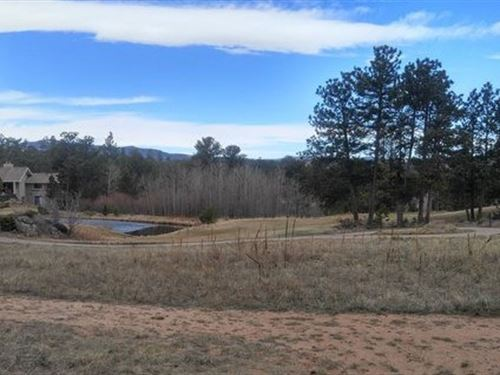 Mountain Building Site Fox Acres : Red Feather Lakes : Larimer County : Colorado