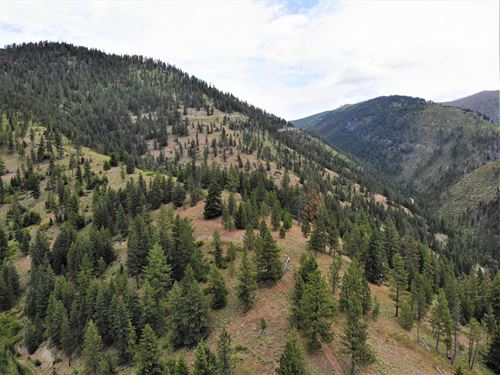 Recreation Land For Sale : Frenchtown : Missoula County : Montana