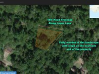 Half Acre With 180 Road Frontage : Livingston : Polk County : Texas