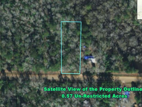 Half-Acre No Restrictions Land : Livingston : Polk County : Texas
