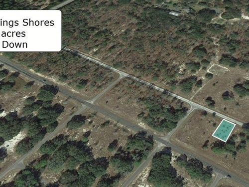 .23 Acre Cleared Lot On Paved Road : Ocklawaha : Marion County : Florida