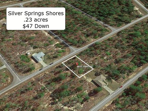 .23 Acre Partially Cleared Lot : Ocklawaha : Marion County : Florida