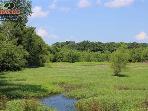 Fargo 40 Adjacent to Cache River : Brinkley : Monroe County : Arkansas