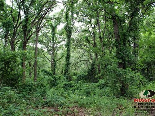Private Lot Near Fall River State : Fall River : Wilson County : Kansas
