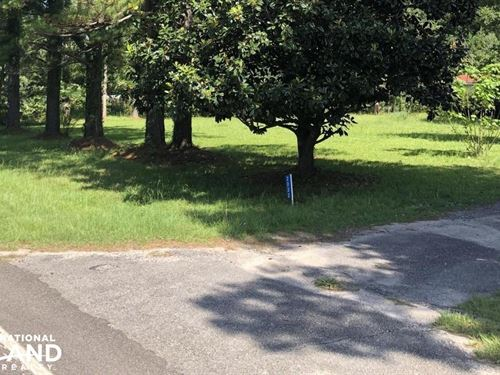 Givhans State Park Neighbor : Givhans : Dorchester County : South Carolina