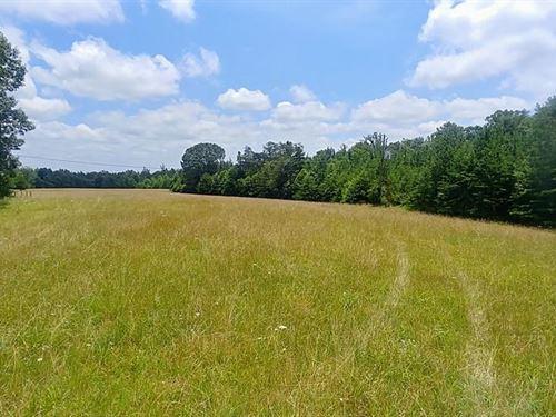 Nice Land Lot Henry County, Axton : Axton : Henry County : Virginia