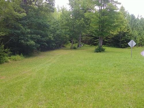 23 Acres Hunting Land Henry County : Axton : Henry County : Virginia