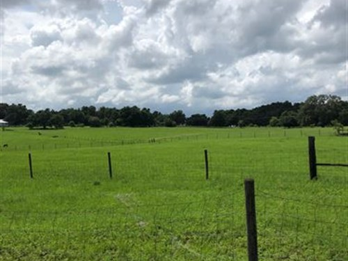 Owner Financing 7 Acres Lake Access : Brooksville : Hernando County : Florida