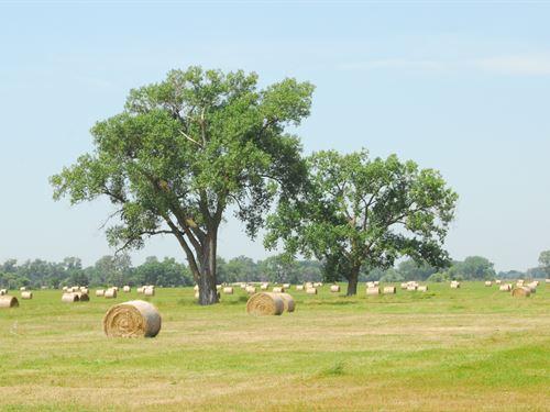 987.7+/- Acres Plus School Lease : Inman : Holt County : Nebraska