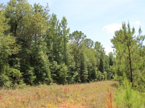 Troup County Georgia Land For Sale Landflip