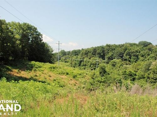 176 Acre Cocke County Opportunity : Newport : Cocke County : Tennessee