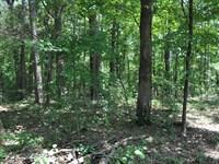 Water Front Property For Sale : Clinton : Van Buren County : Arkansas