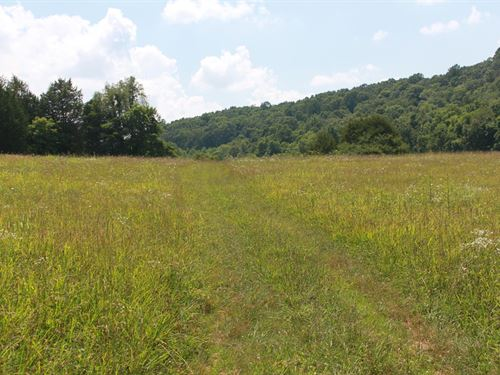 Prime Hunting Land, Hart County KY : Cave City : Hart County : Kentucky