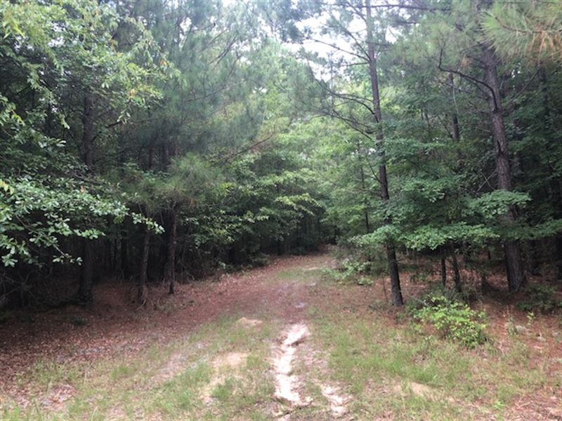 Nesmith Retreat : Gordon : Baldwin County : Georgia