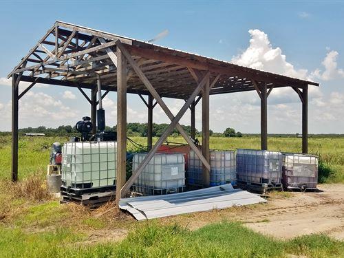380 Acres Of Citrus Groves : Zolfo Springs : Hardee County : Florida